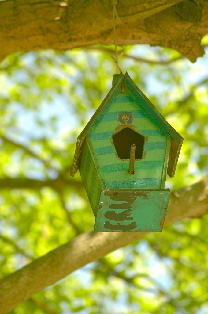 mackaparkbirdhouses9