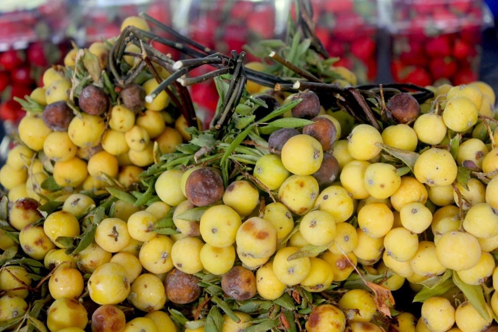 organicmarket10
