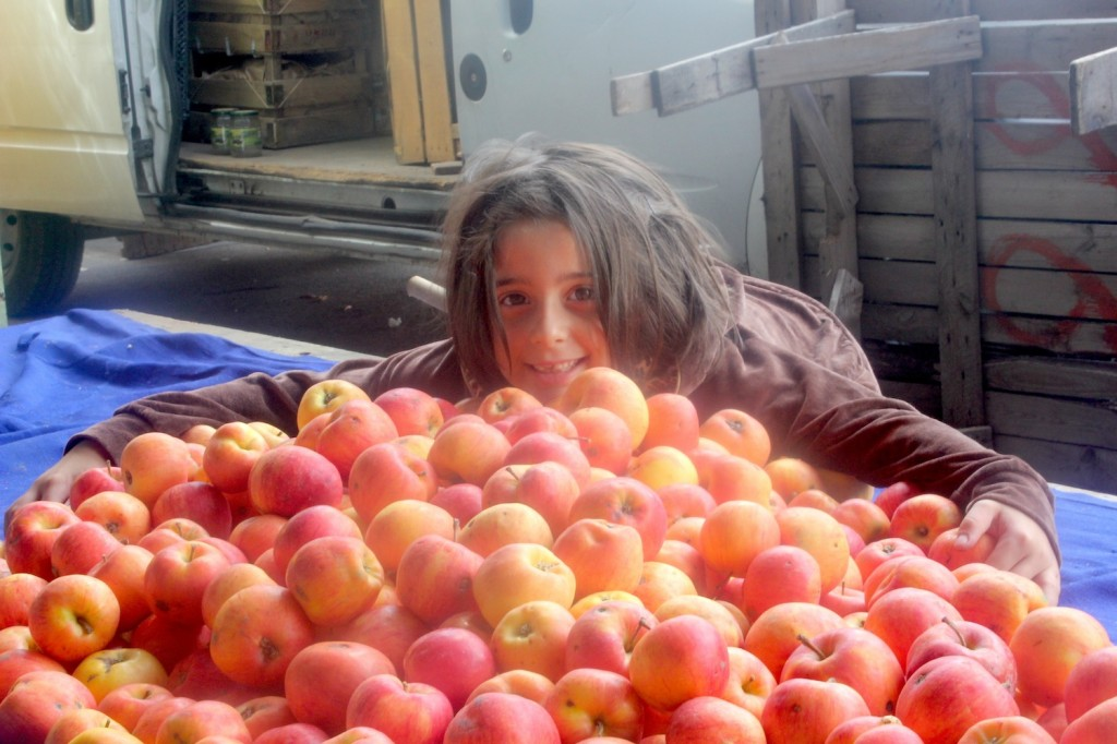 organicmarket1