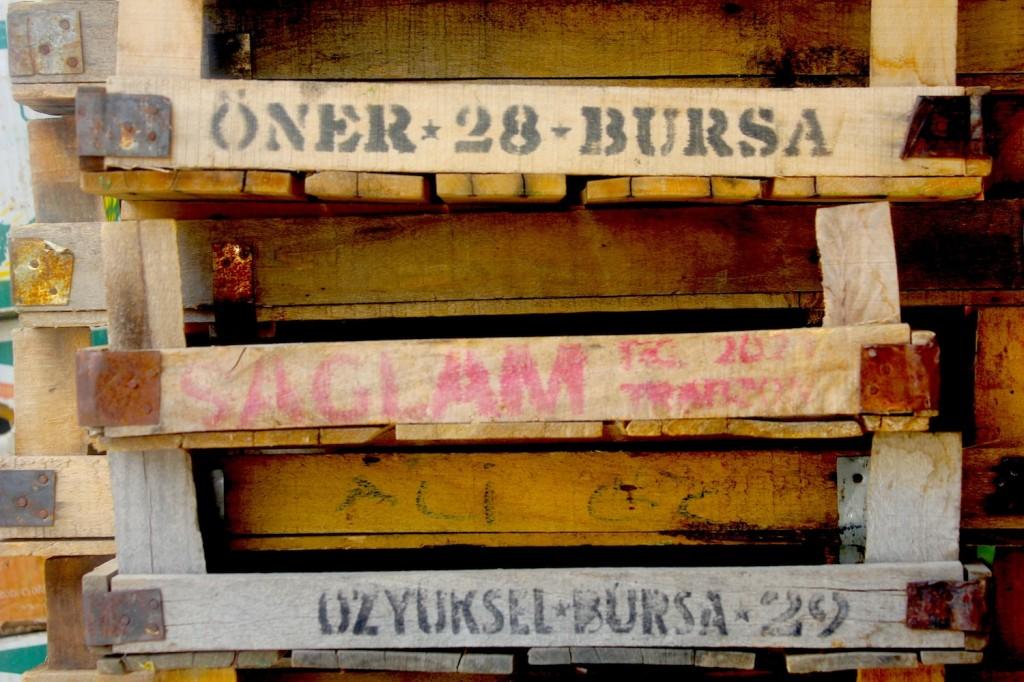 organicmarket13