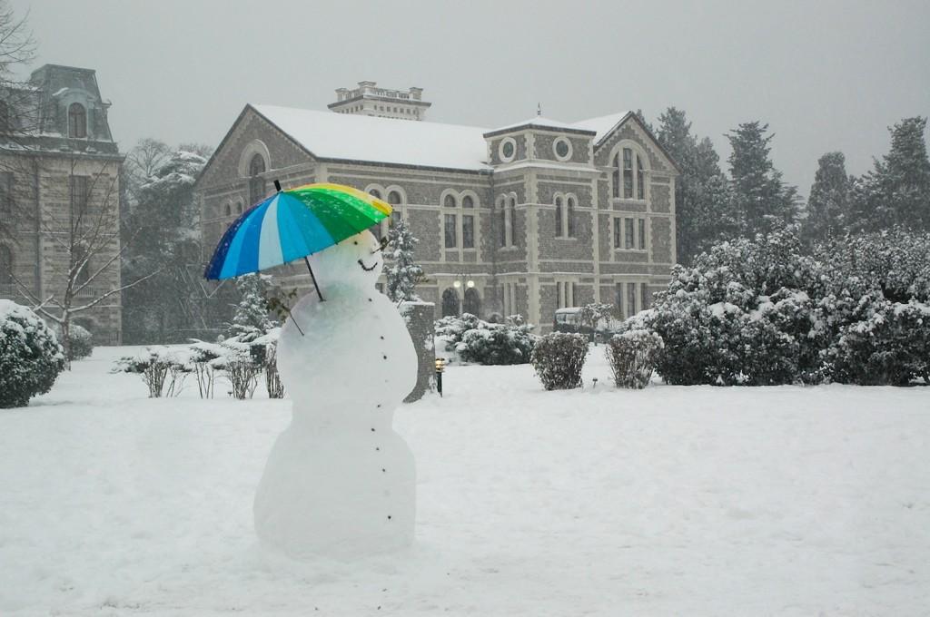 snowbu1