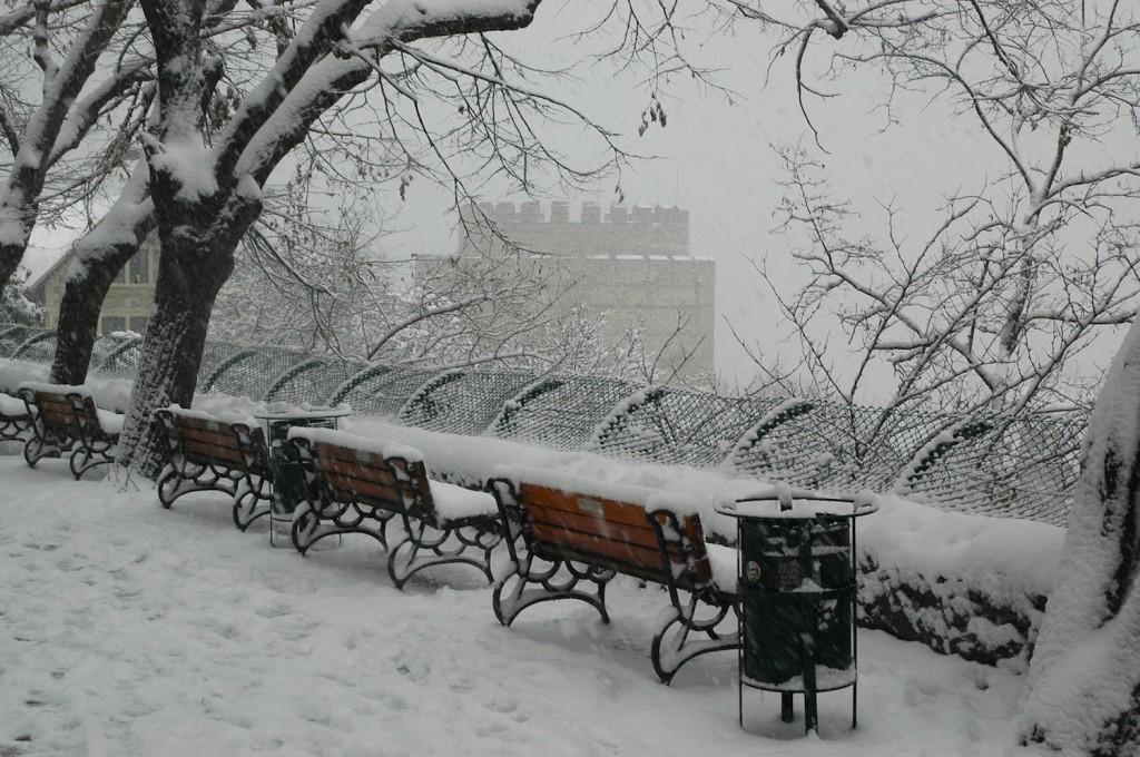 snowbu2