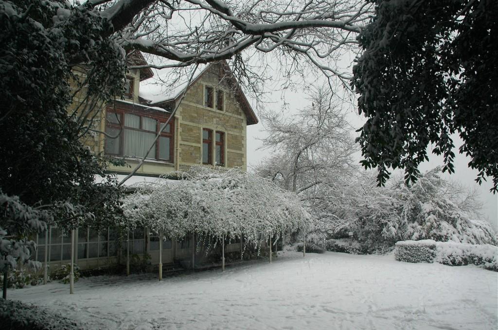 snowbu6