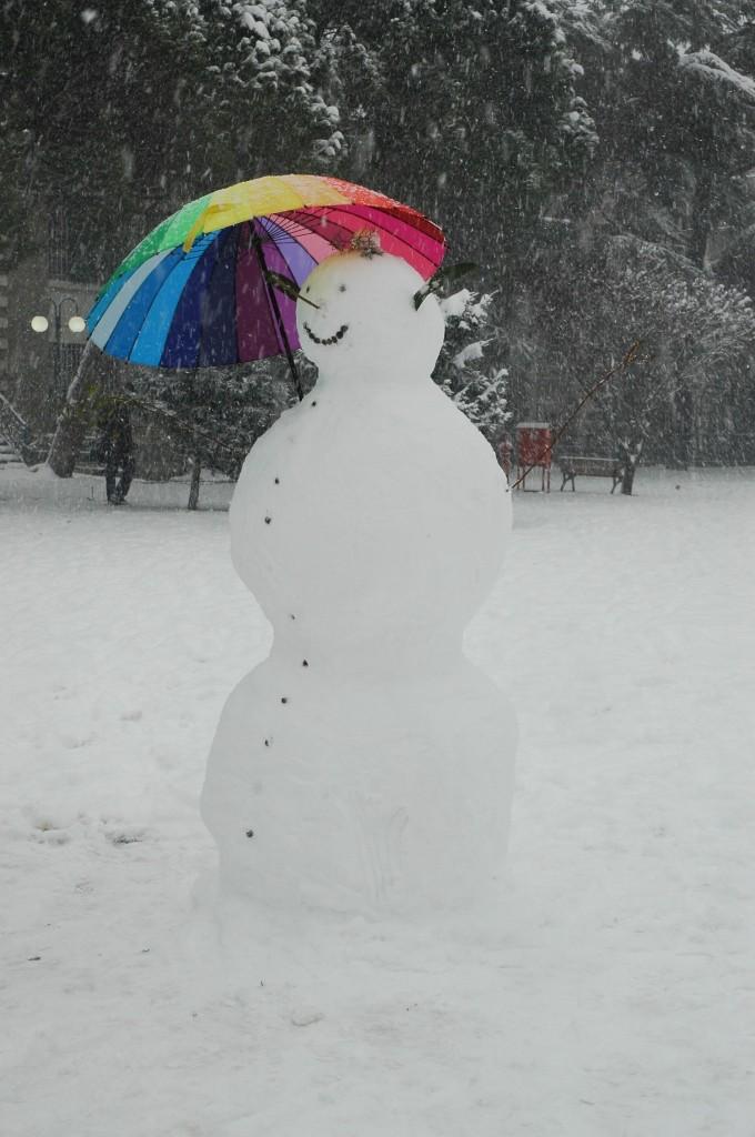 snowbu8